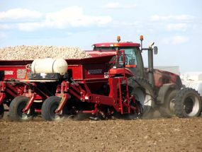 Potato growers target market growth with a brand for stewardship